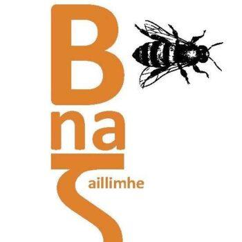 The IBA Logo